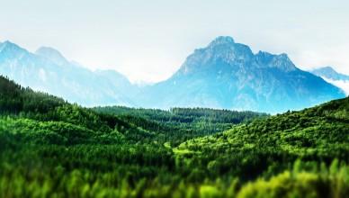 tilt-shift-forest-landscape-1600x900